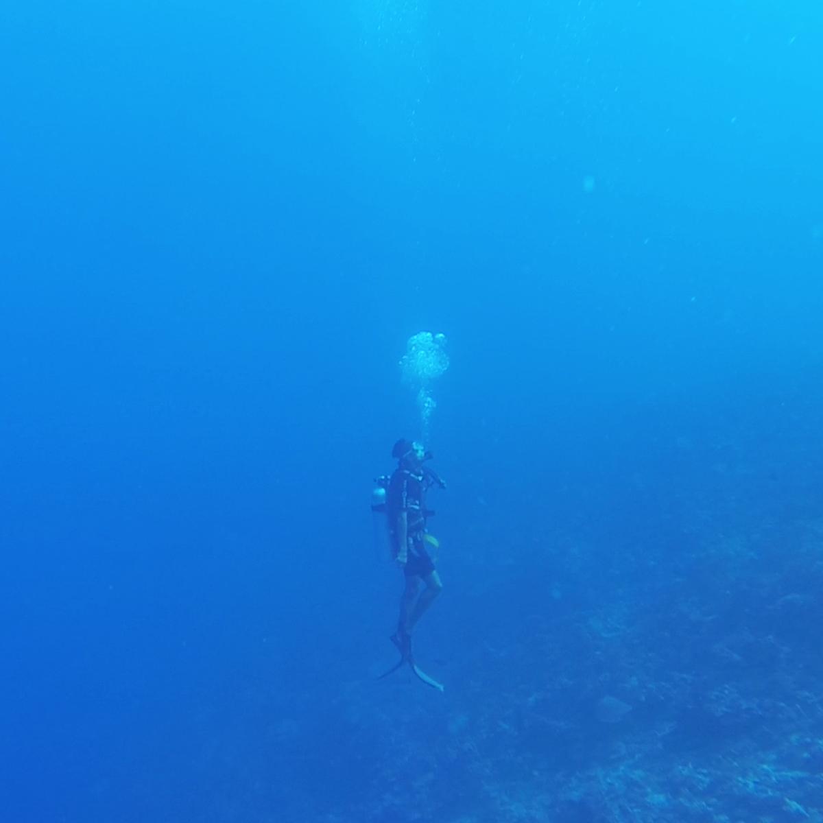garrett gee deep sea