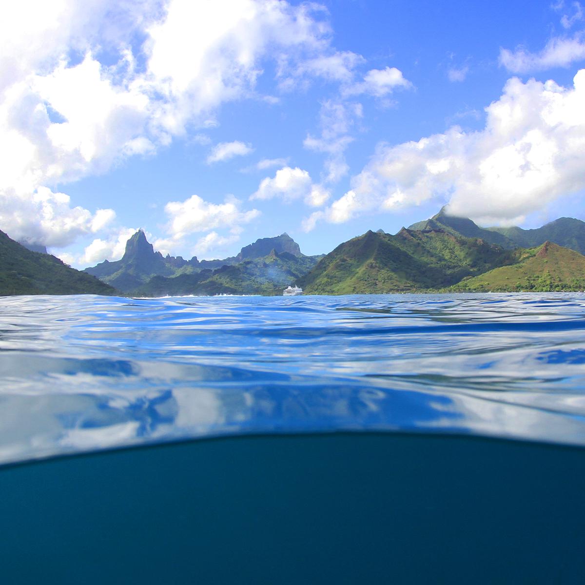 tahiti underwater photography