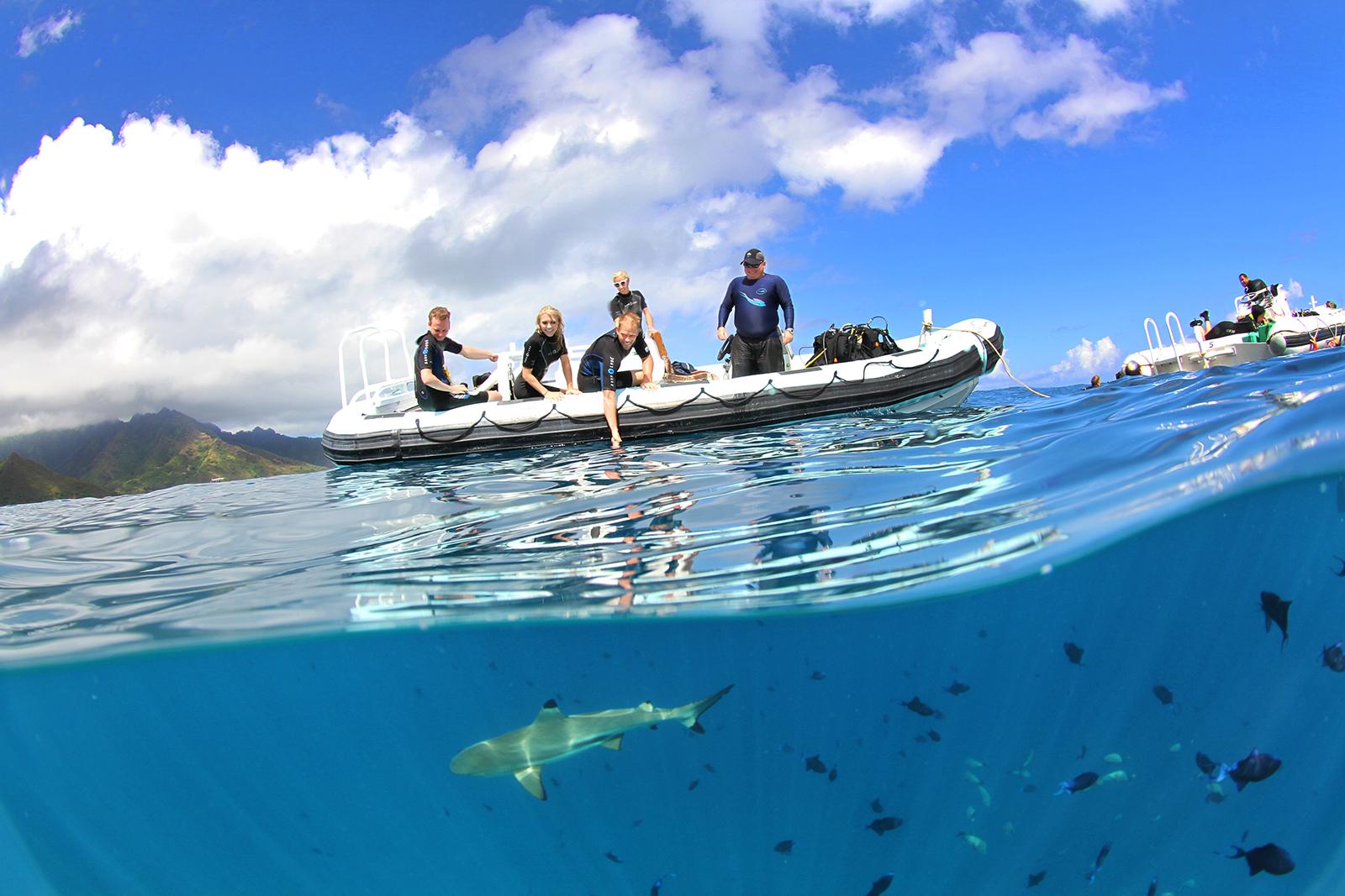 spl underwater photography tahiti